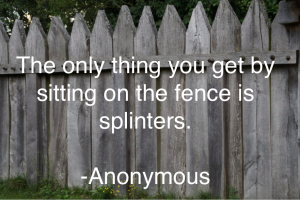 The only thing you get by sitting on the fence is splinters.