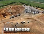 Not Just Tennessee